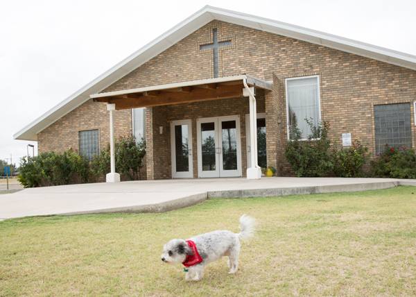 Guideposts: Homer on the lawn outside St. Helen's Catholic Church