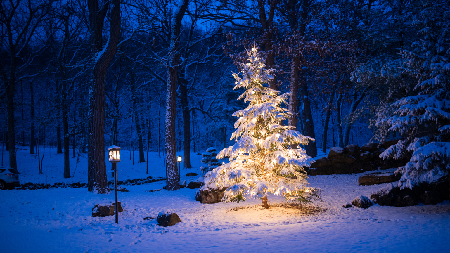 A lone Christmas tree with bright lights in the middle of a snowy forest a night.