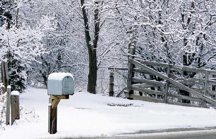 A roadside mailbox on a snowy, icy day
