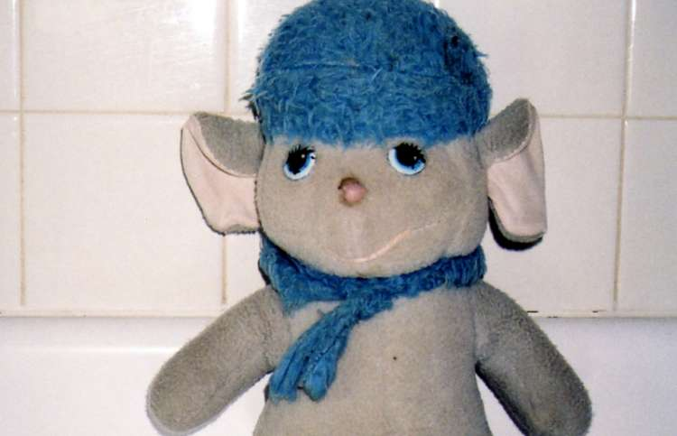 Photo of the missing stuffed animal, Bianca.