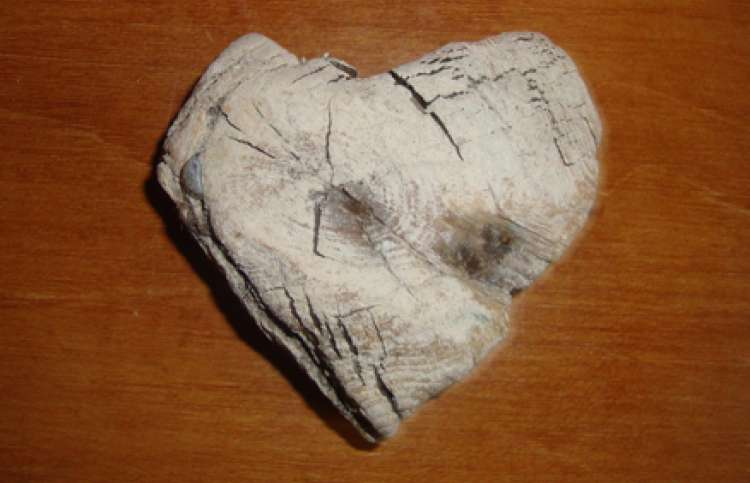 The driftwood heart Nancy found at the lake where she and Jim vacationed