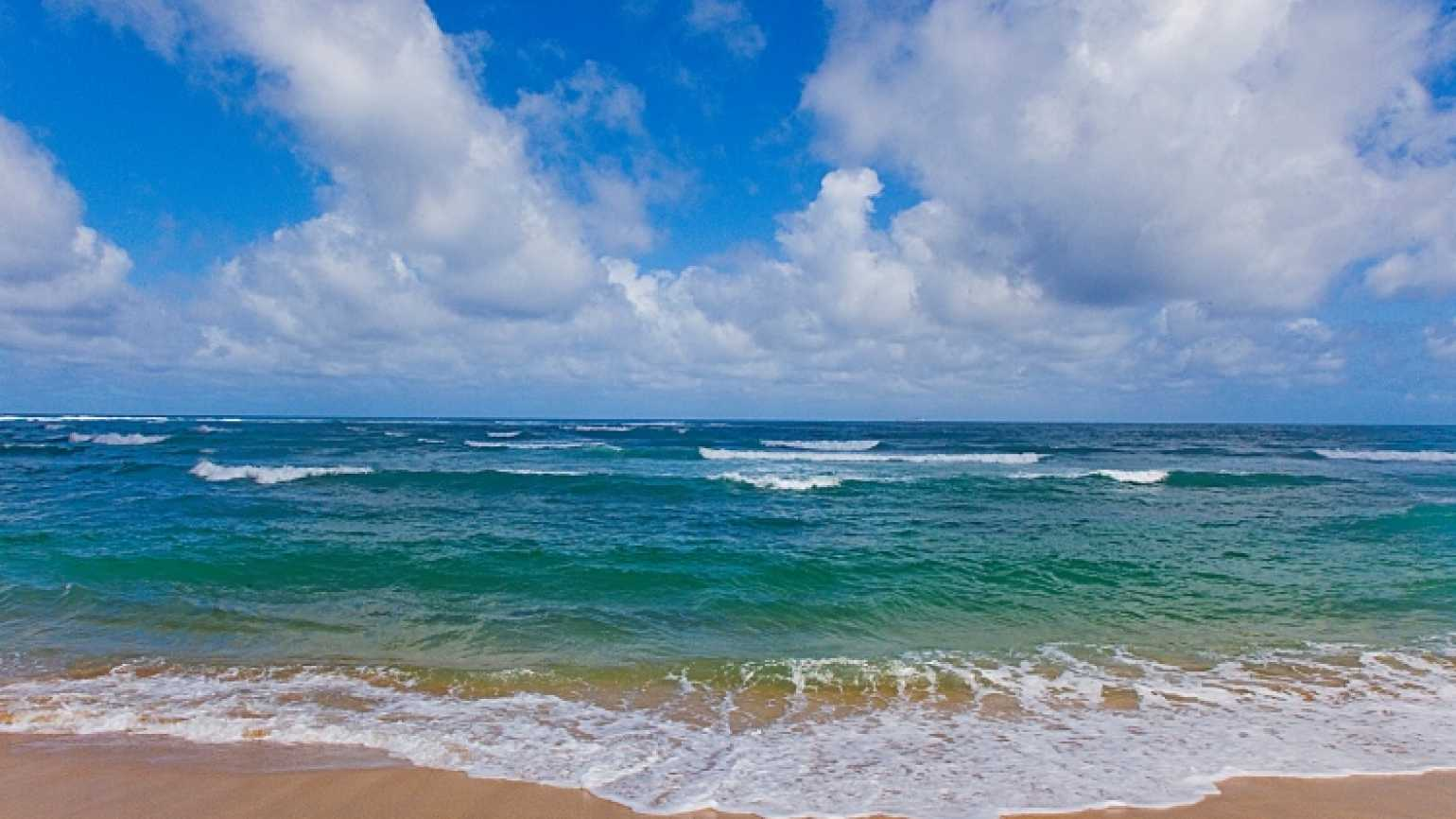 Beautiful beach beneath puffy clouds in blue sky. Kauai, Hawaii, USA