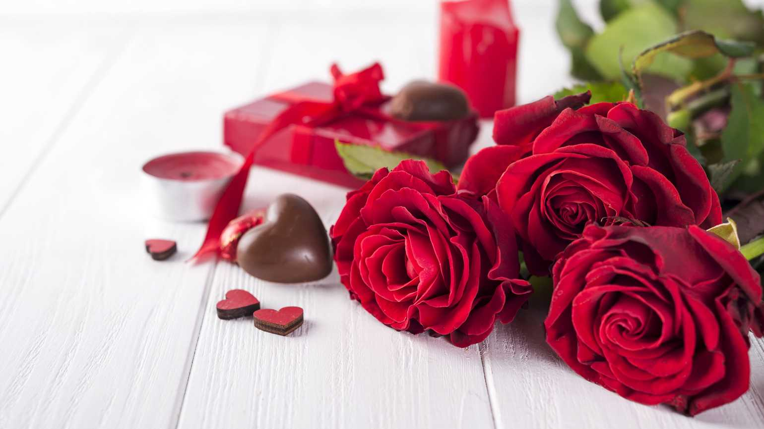 Beautiful red rose and dark chocolate for valentine's day on white wooden platform