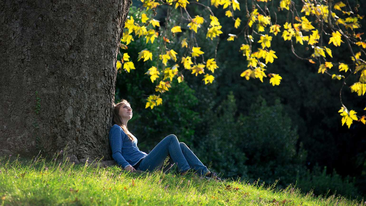 A young woman gazes skyward while sitting under a tree
