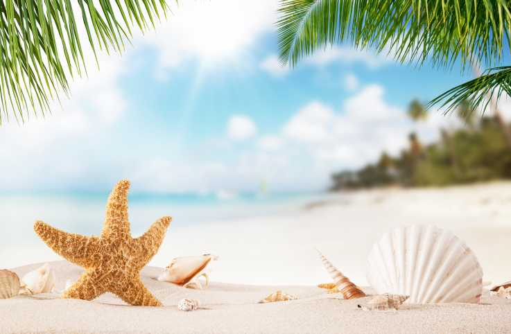 Beach quotes, Quotes about the beach