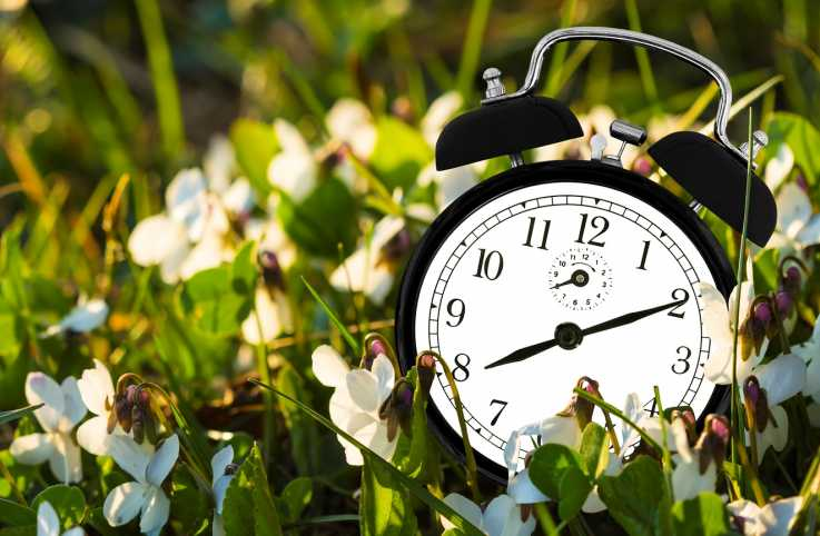 Fascinating Facts About Daylight Saving Time