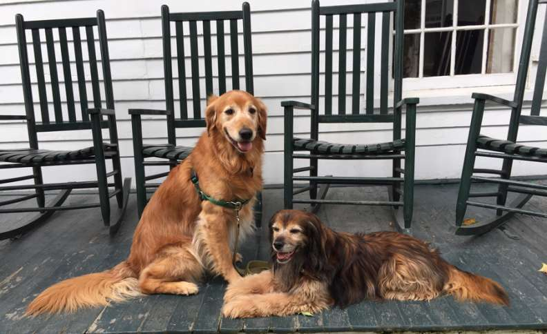 Labor Day Activities: Ike and Kelly do a little relaxing on rocking chair-filled porch.