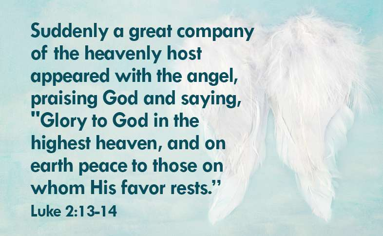 """Suddenly a great company of the heavenly host appeared with the angel, praising God and saying, """"Glory to God in the highest heaven, and on earth peace to those on whom his favor rests.""""  Luke 2:13-14"""