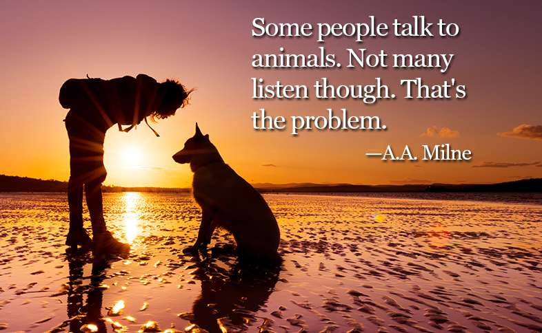 Some people talk to animals. Not many listen though. That's the problem. ―A.A. Milne