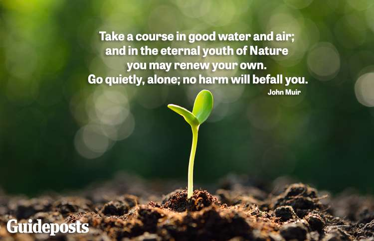 Take a course in good water and air; and in the eternal youth of Nature you may renew your own. Go quietly, alone; no harm will befall you. -John Muir