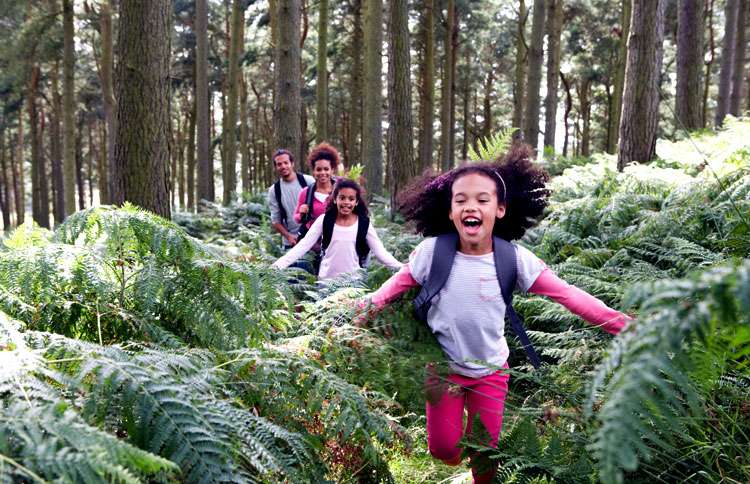 Two young girls lead their family along a hiking path in the woods