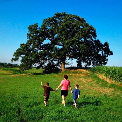 Guideposts: Out-of-town friends Lora Kohnlein and her sons Duggan and Patrick experience That Tree.