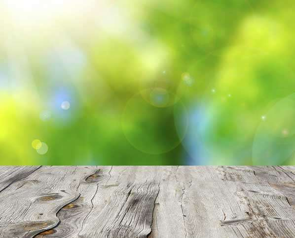 Guideposts: A photograph taken from the surface of a picnic table with beautiful spring greenery in the background.