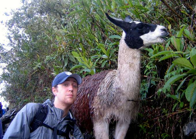 Adam meets a llama as he enters Machu Picchu. According to the Incas, llamas served as spiritual guides offering endurance and strength to travelers.