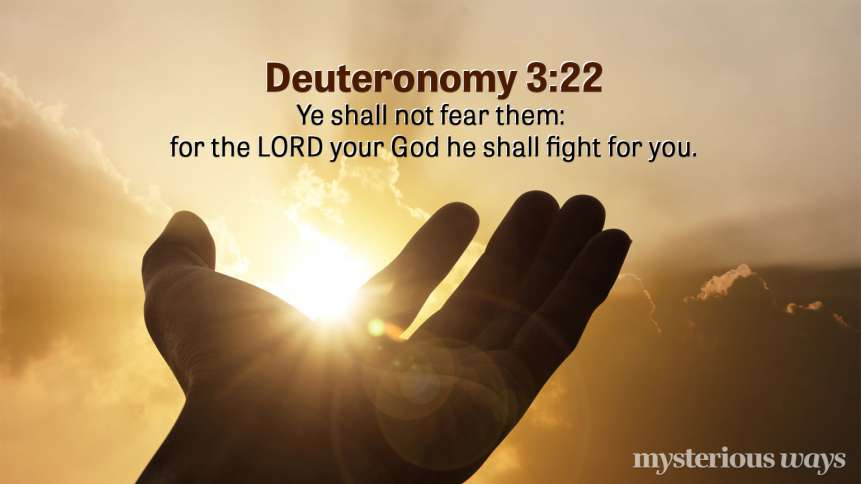"Deuteronomy 3:22 "" 'You must not fear them, for the LORD your God Himself fights for you.'"""