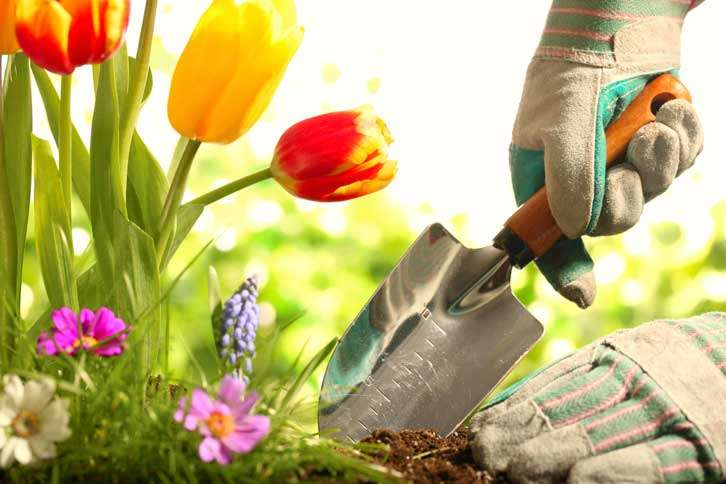 Guideposts: a gloved hand uses a small spade to dig in a flower garden