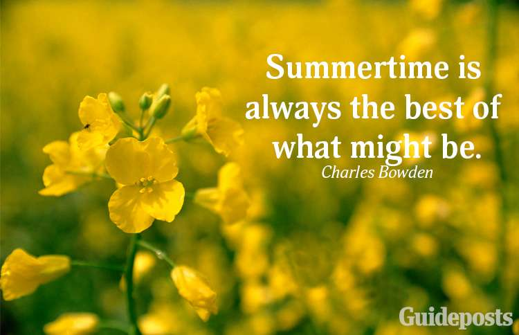 A summer quote from Charles Bowden