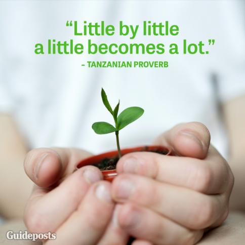 """Little by little, a little becomes a lot."""