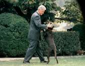 A Presidents' Day Gallery of First Pets