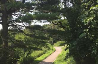 How walking in nature can lower stress and promote health