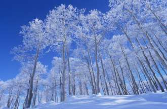 When fresh snow is like having a pure heart.