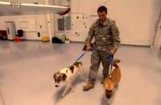 Sgt. Chris Duke with Rufus and Target