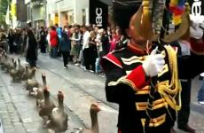 Belgium's Goose Parade, as seen during the Festival of Ghent.