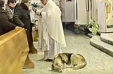 Tommy rests during mass.