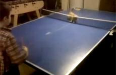A young boy plays ping pong with his cat.